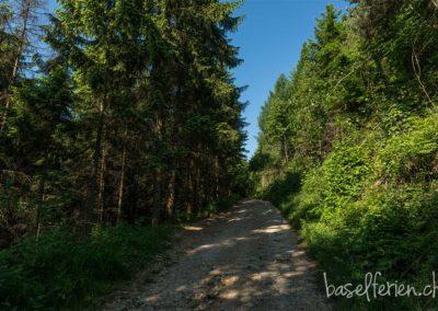 8. Schleifenberg: 11,2 km